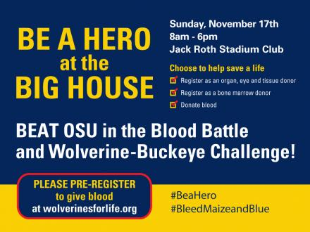 Be a Hero at the Big House Poster 2013